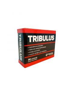مكمل تريبولوس لزيادة هرمون الذكورة وزيادة العضلات والقوة الجسدية من فورتيكس - 30 كبسولة